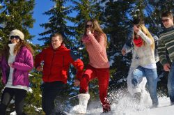 Winter lapland tours