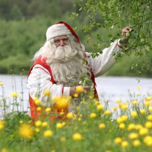 Summer Tours in Lapland