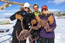 king crab fishing in Kirkenes